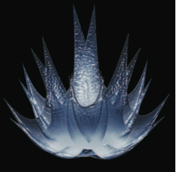 Starloscet's crown